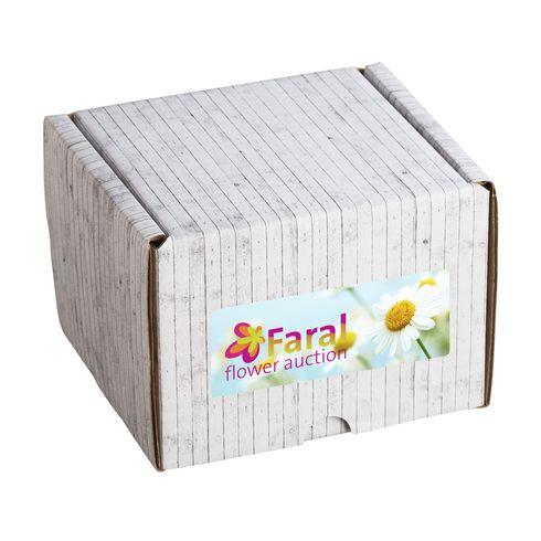 Geschenk- / Versandverpackung